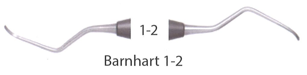Scalers Anterior Posterior 1-2